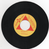 Browne Bunch - There's Fun For All / Something Silly  (Triangle / Dub Store) 7""